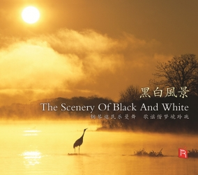 The Scenery Of Black..